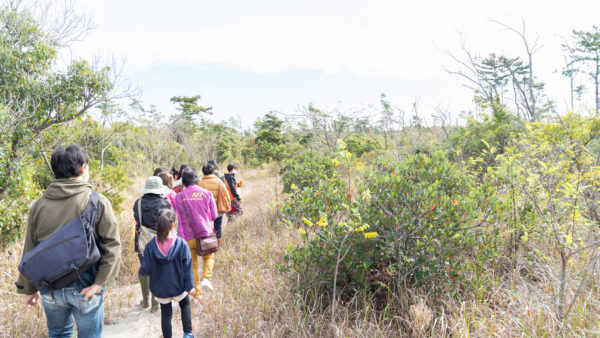 【 観察会報告 】中田島砂丘の植物、知っていますか?